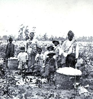 field-slaves
